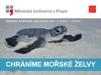 Tvořivá dílna o mořských želvách v MKP 29.11.