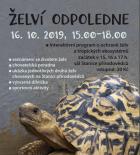 Želví program ve stanici přírodovědců 16.10.2019